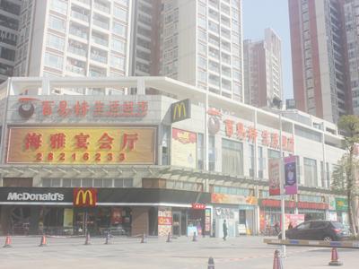 海雅百貨龍崗店油煙凈化工程